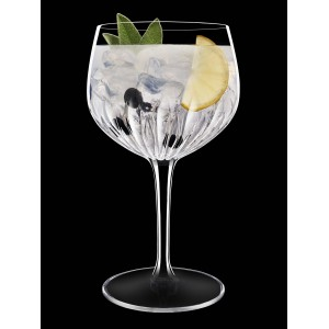 Calice Spanish Gine&Tonic - 80cl - Mixology